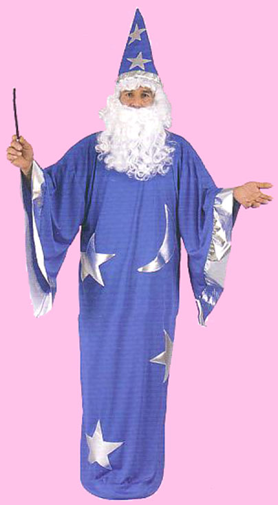 fun n folly wizard costume